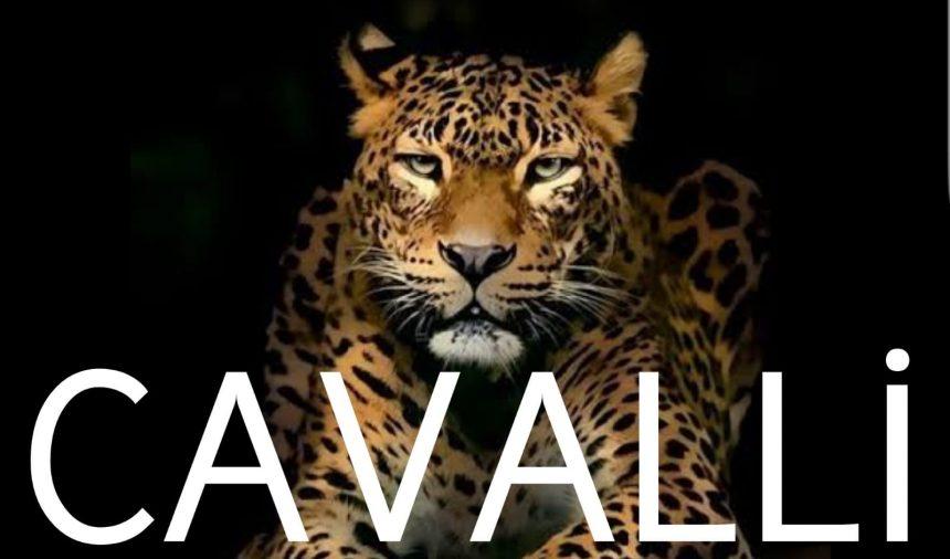 2020 Trend Ürünleriyle Cavalli Mağazamız Hizmetinizde